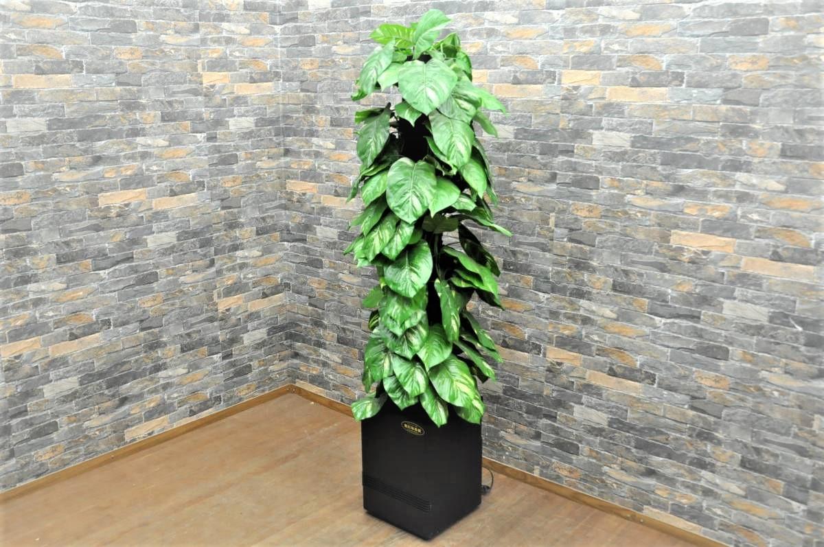 観葉植物型空気清浄機 気になる樹 CLEAN&GREEN SQエアフィルター 100Vを買い取りました!(^_-)-☆